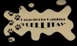 Residencia canina huellitas