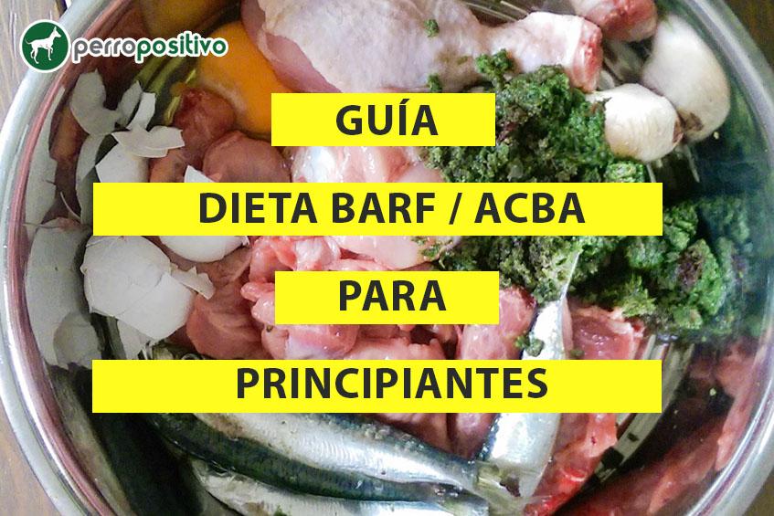 Guía dieta barf para principiantes