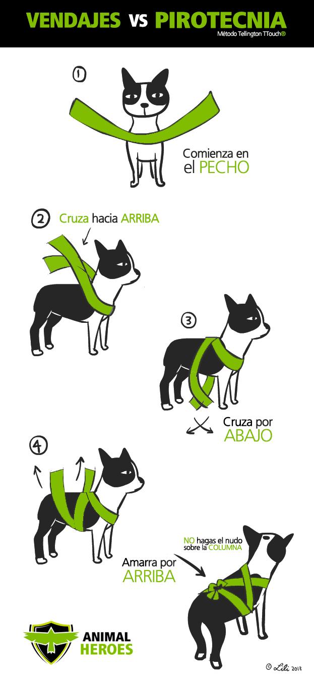 miedo de los perros a los petardos - Perropositivo.com