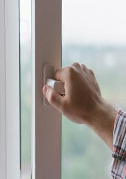 cierra puertas y ventanas para evitar el miedo de los perros a los petardos y fuegos artificiales - Perropositivo.com