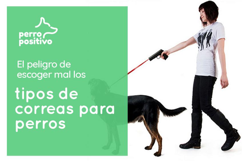 el peligro de escoger al los tipos de correas para perros