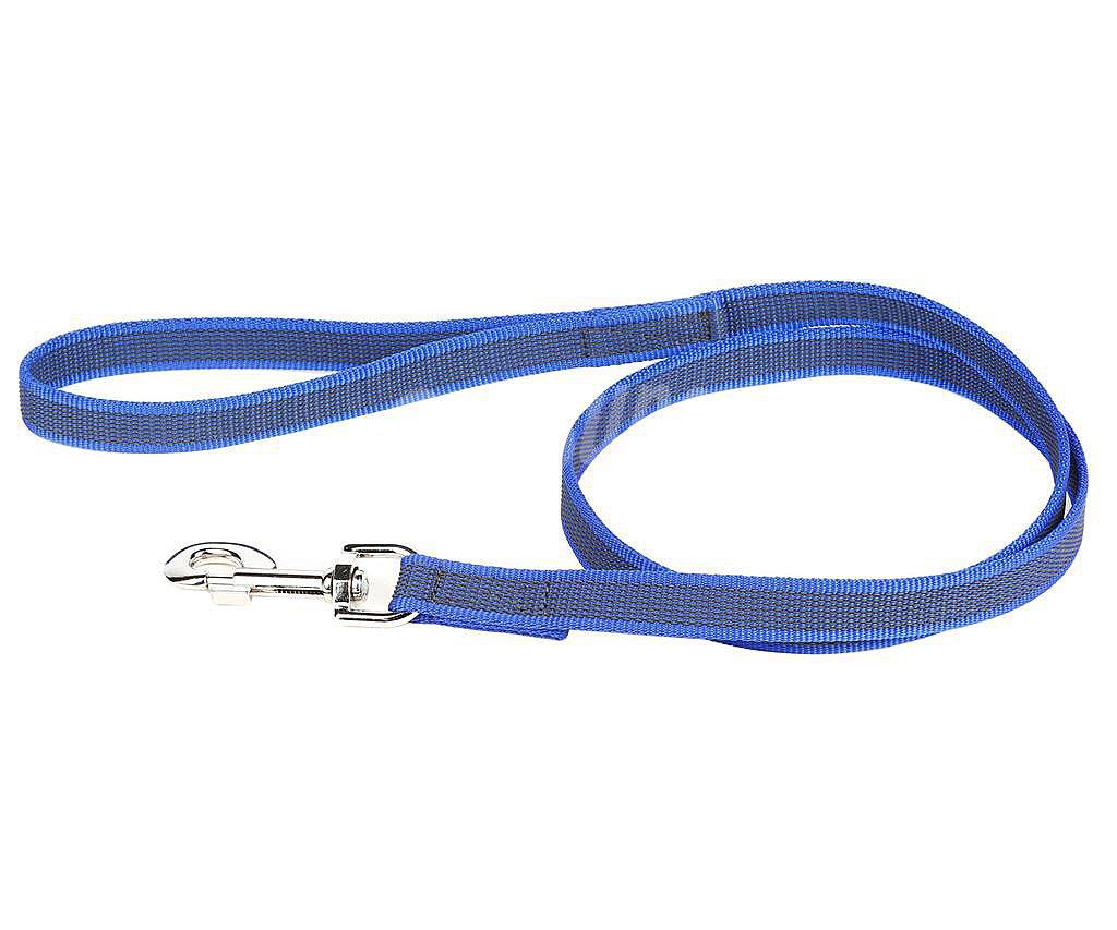 engomada - Tipos de correas para un perro - Perropositivo.com
