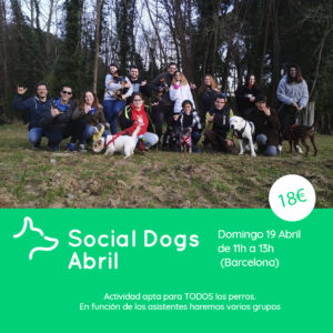 Social Dogs Abril Barcelona