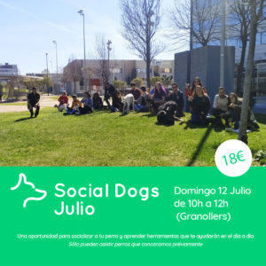 Social Dogs Julio Granollers