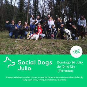 Social Dogs Julio Terrassa