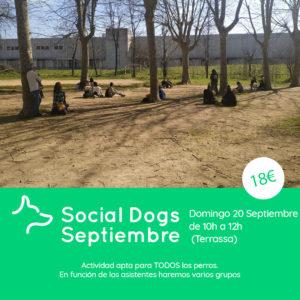Social Dogs Septiembre Terrassa